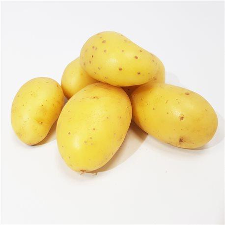 Pomme de terre Agata sac de 10 kg