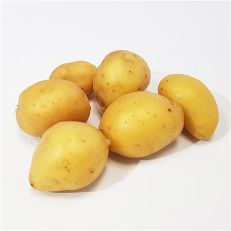 Pomme de terre grenaille (Baghera)