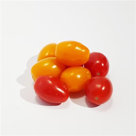 Tomates Coeur de pigeon - mélange jaune & rouge