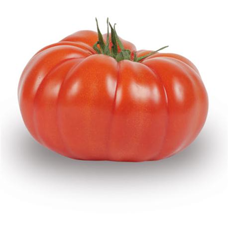 "Tomate ""Coeur de boeuf"""