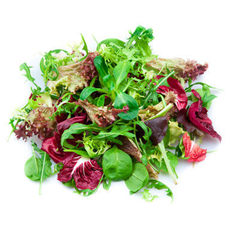 Salade Mesclum barquette