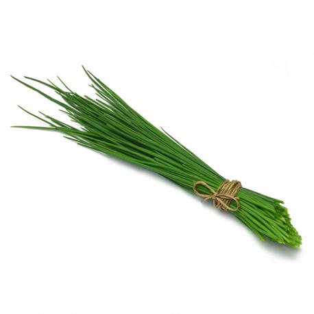 Barquette d'herbes - ciboulette
