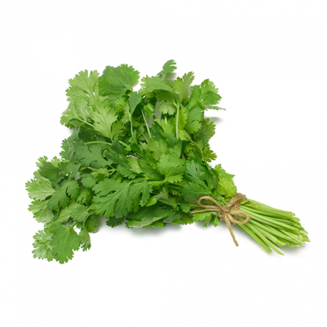 Barquette d'herbes - coriandre
