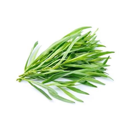Barquette d'herbes - estragon