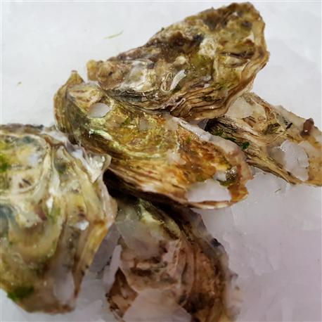 Huîtres Marennes n°3